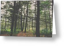 Step Into The Forest Greeting Card