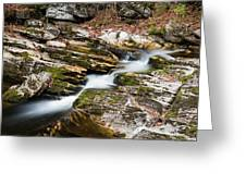 Stepping Down The River Greeting Card