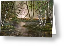Stepping Stones On Cannock Chase Greeting Card