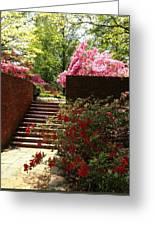 Steps To Azalea Fairyland Greeting Card