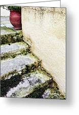 Steps Wall And Vase Greeting Card