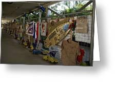 Steve Irwin Memorial Greeting Card