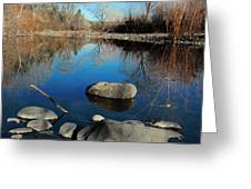 Stick In The Mud Greeting Card by David Taylor