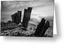 Sticks And Stones Greeting Card