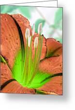 Stigma - Photopower 1002 Greeting Card