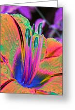 Stigma - Photopower 1151 Greeting Card