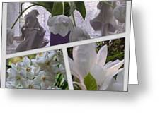 Still Life In White Greeting Card