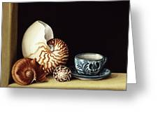 Still Life With Nautilus Greeting Card by Jenny Barron