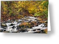 Still River Rapids Greeting Card