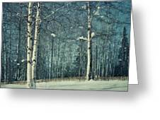 Still Winter Greeting Card