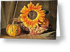 Stillife With  The Sunflower And Pumpkins Greeting Card by Halyna  Yarova