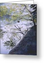 Stillness And Simplicity Greeting Card