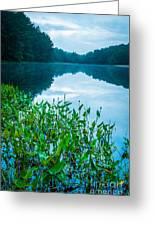 Stillness On Schreeder Pond Greeting Card