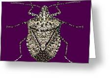 Stink Bug Bedazzled Greeting Card