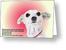 Stitch - A Shelter Sweetie Greeting Card