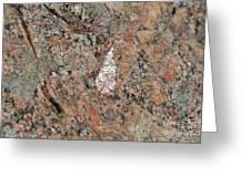 Stone Adornment Greeting Card