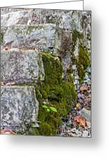 Stone And Moss Greeting Card
