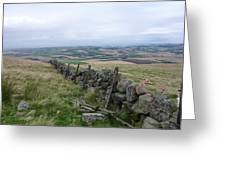 Old Dry Stacked Stone Fence Of Scotland Greeting Card