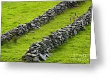 Stone Fences In Ireland Greeting Card