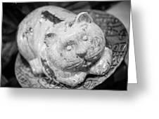 Stone Kitty Greeting Card