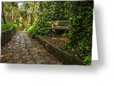 Stone Path Through A Forest Greeting Card by Jess Kraft