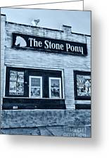 Stone Pony Cool Side View Greeting Card