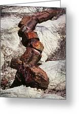 Stone Trees - 337 Greeting Card