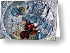 Stones And Fall Leaves Under Water-41 Greeting Card