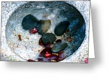Stones And Fall Leaves Under Water-43 Greeting Card