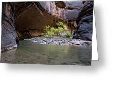 Stones Underwater, Zion National Park Greeting Card