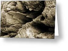 Stonewood Canyon - Square - Sepia Tone - Wonderwood Collection - Olympic Peninsula Wa  Greeting Card