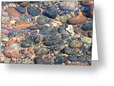 Stony Beauty Greeting Card