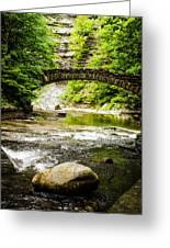 Stony Brook State Park Greeting Card