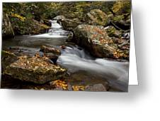 Stony Creek Falls Greeting Card