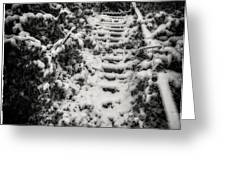 Stony Steps Covered With Snow Greeting Card