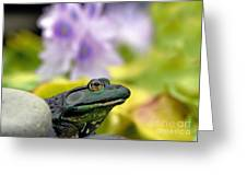 Stop And Smell The Hyacinths Greeting Card