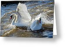Stop Splashing Me Greeting Card
