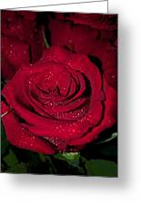 Stop To Smell The Roses Greeting Card