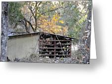 Storage Shed In Color Greeting Card