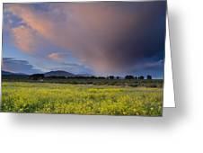 Storm At Sunset Greeting Card