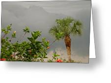 Storm Clouds And Flowers Greeting Card