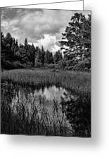 Storm Clouds Rolling In Over The Creek Greeting Card
