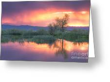 Storm Color Greeting Card