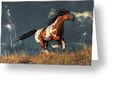 Storm Mustang Greeting Card