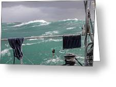 Storm On Tasman Sea Greeting Card