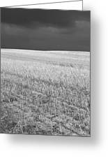 Storm On The Stubble Greeting Card