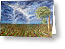 Storm Over Homestead Greeting Card