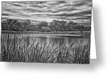 Storm Passing The Pond In Bw Greeting Card