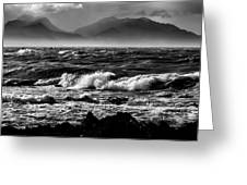 Stormy Coast New Zealand In Black And White Greeting Card