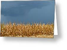 Stormy Corn Greeting Card